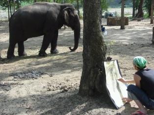 me & elephant